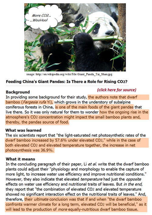 Panda extinction co2 dwarf bamboo china peer reviewed study