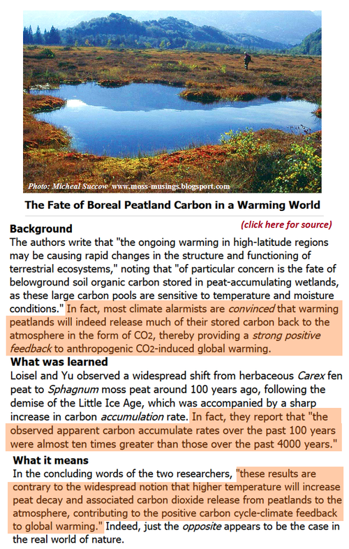 Ipcc bupkes prediction co2 peatland no positive feedback