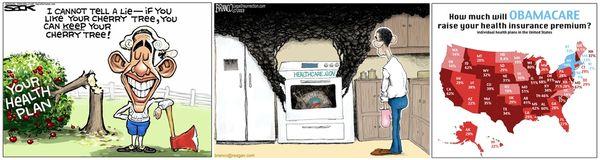 Obamacare cartoon 112813
