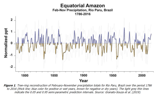 Equatorial Amazon basin jun2020