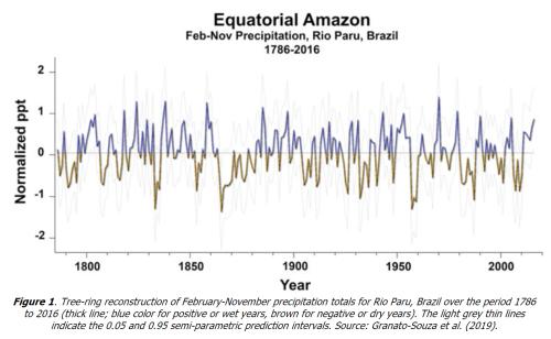 Equatorial Amazon basin jun2020
